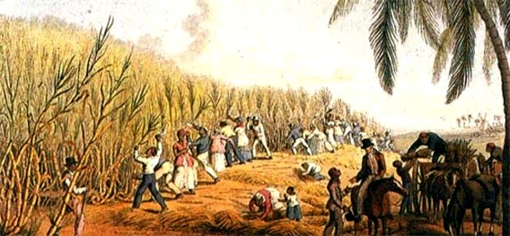 slavesincane